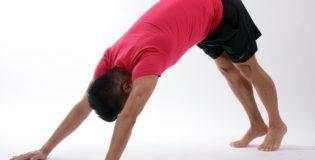 Jaka siłownia jest odpowiednia?